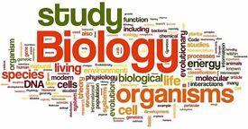 Biology tutor (Nat 4/5/Higher/problem solving)