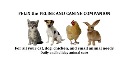 FELIX THE FELINE & CANINE COMPANION