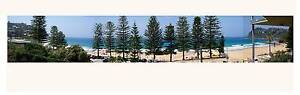 WHALE BEACH BEACHFRONT PAD Avalon Pittwater Area Preview