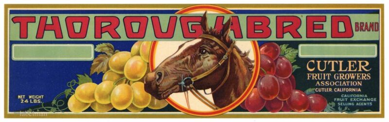 THOROUGHBRED Brand, Horse Racing,  **AN ORIGINAL GRAPE CRATE LABEL**