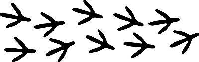 Set of 10 Chicken Feet Tracks Footprints Decal Window Bumper Sticker Car - Footprint Stickers