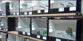 Clearance, show cages, travel cages different sizes