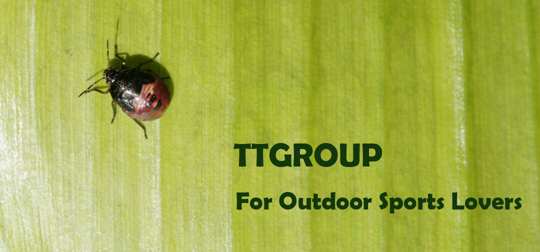 TT GROUP Outdoor