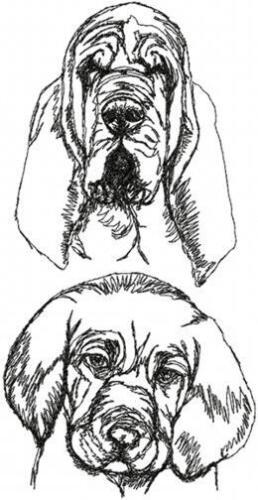 Bloodhound Dog Breed Personalized SWEATSHIRT EMBROIDERED Beautiful
