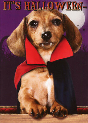Count Dachula Funny Dachshund Dog Halloween Card - Recycled Paper Greetings - Halloween Card Animated