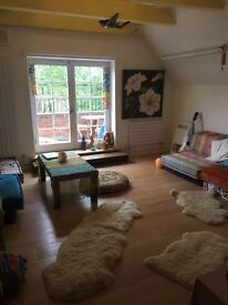 A spacious one bed flat for summer rental in Primrose Hill. Its free in July and August!