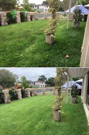 Garden maintenance - Local gardeners-Hedge cutting -Grass cutting -Garden tidy up London