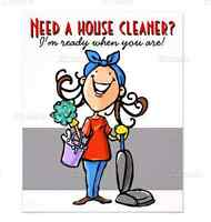 Mature,Experienced housecleaner
