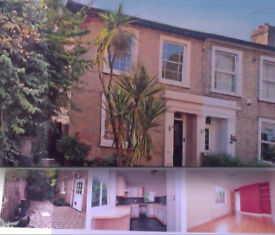 LOVELY ONE/TWO BED GARDEN FLAT - ORCHARD ROAD, KINGSTON UPON THAMES