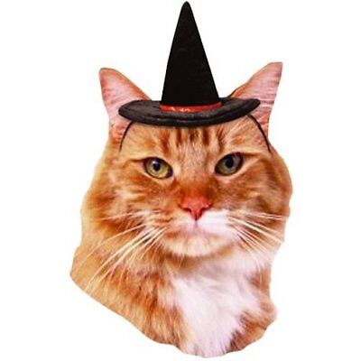 Ferret Costumes Halloween (VOTOYS XPET CAT FERRET FELT WITCH HAT SMALL HALLOWEEN COSTUME. FREE SHIP IN)