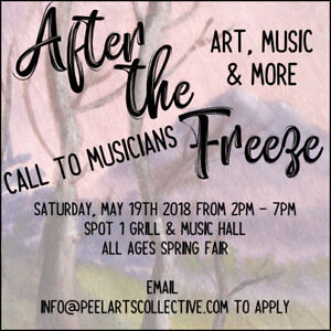 Seeking musicians / bands / solo acts for arts & music showcase
