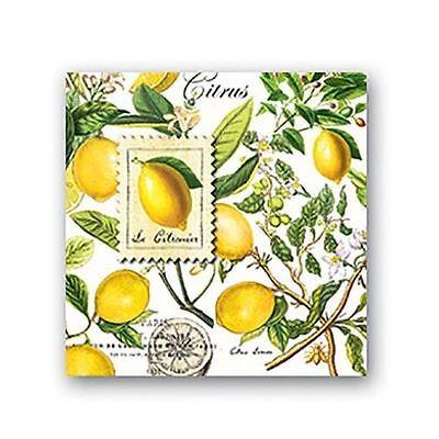Michel Design Works Paper Cocktail Napkins - Lemon Basil Design Design Cocktail Napkins
