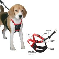 No pull cushioned dog harness (size medium)