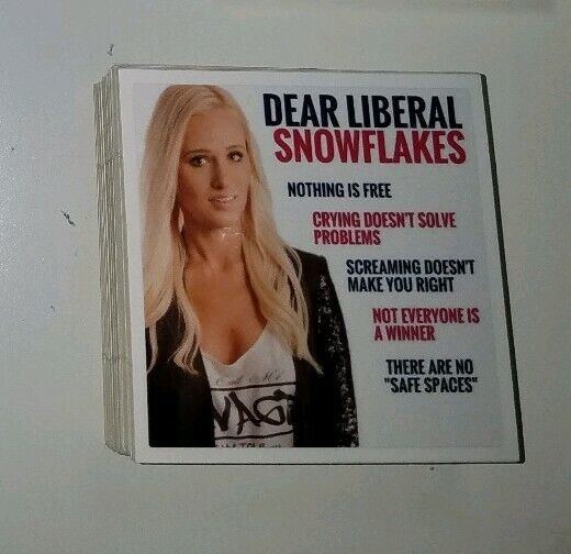 Tomi Lahren Anti Snowflake Funny Conservative Sticker