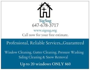 SigSug | Low-Rise Window Cleaning