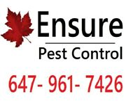 Pest Control - ✓ Trustworthy ✓ Experts ✓ Cheap ✓ Effective