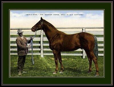 Kentucky Man-O-War Horse Art Picture Print