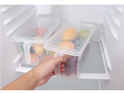 Kitchen Food Fruit Storage Containers Refrigerator Case Plastic Box With Handle for sale  China