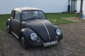 Classic 1969 Beetle for sale