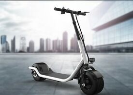 New 2017 Design Fat Tyre Electric Stand Up Kick Scooter, With a 350W Powerful Motor
