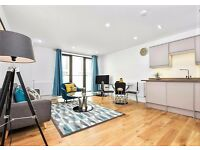 Stunning 1 Bed Flat just few Mins to Tube Station Available Immediately