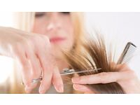 Hairdressing Course - Govt Funded: Level 2 & 3 NVQ, Apprenticeships & 24+ learning loan