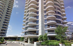 Downtown: 2BEDS +2 BATHS + DEN + Washer/dryer +  POOL