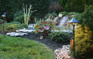 Solutions for your Landscaping Needs!