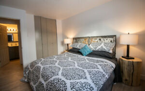 Recently Renovated Riverdale Apartment Available Nov 15th