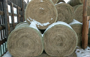 S.Cariboo Hay for sale