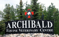 Veterinary Assistant, Client Relations, Horse Care