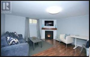 Spacious Basement Apartment in Mimico