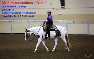 Oh Zippossibilities APHA Gelding - For Lease