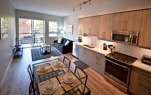 """Central Moderne"" 2 bdrm Condo from $190 CAD/night Parking incl"