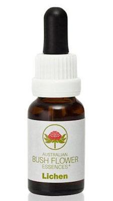 Lichen - Australian Bush Flower Essence Stock Bottle Remedy - 15mL