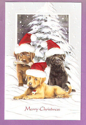 Labrador Retriever Lab Pup Embossed Christmas Cards Box of 16 Trio of Trouble for sale  USA