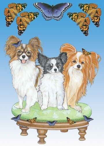 Papillon Blank Note Card