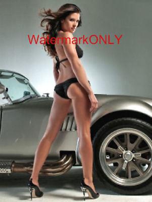 Danica Patrick Race Car Driver   Ac Cobra Super Hot Sexy Photo    6B
