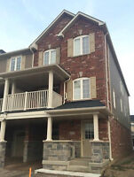 Beautiful Newer Build End Unit for Rent in Waterdown