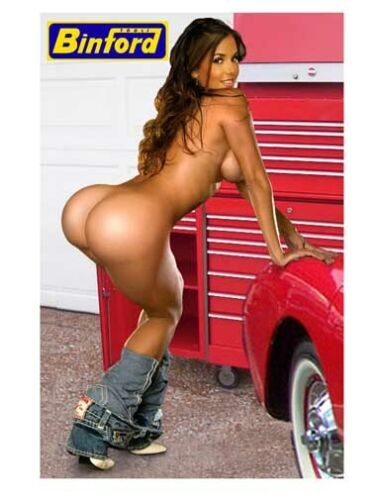 Sexy Tool Box Magnet Binford Tools playmate sweet ass tool time girl