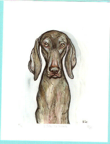 Weimaraner Weim Limited Edition Art Print by Elle Wilson A Little No Nonsense