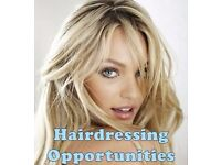 Hairdressing Apprenticeships School Leavers - Advanced Trainee Hairdressers - Assistant Managers