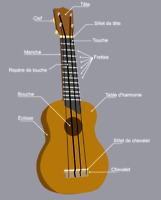 Cours d'Ukulélé /ukulele lesson 20$/h VIAU