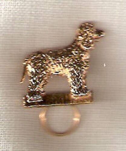 Irish Water Spaniel Gold Plated Eye Glass Scarf Holder Pin Jewelry*