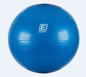 Exercise Ball with Pump (Brand New)