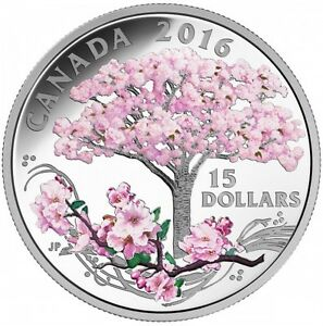 2016 CHERRY BLOSSOM  COIN West Island Greater Montréal image 1