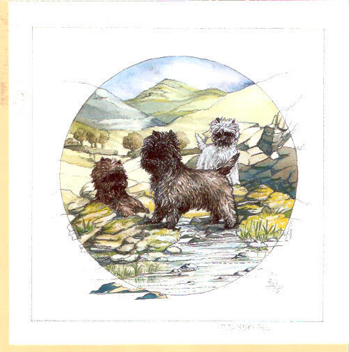 Cairn Terrier Limited Edition Art Print by UK Artist Barbara Hands Boz #77