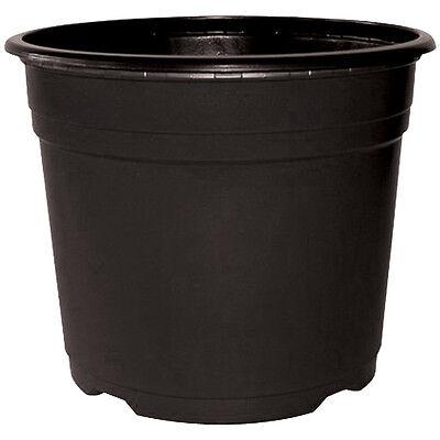912 x 13cm / 1 Litre Quality Thermoformed Black Plastic Plant Pots