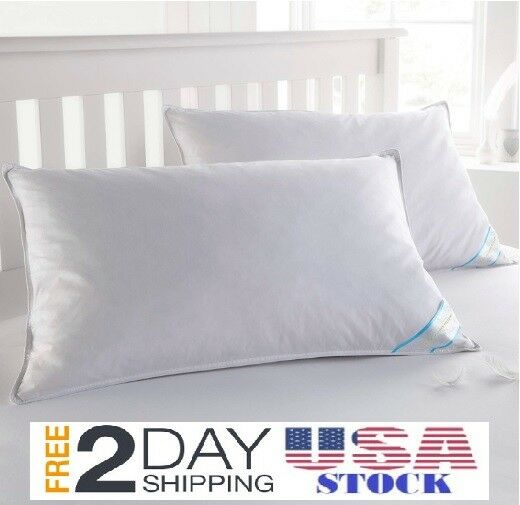 Feather Goose Soft Down Bed Pillow Set of 2 Pillows Cotton C