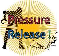 Pressure Washing - 740-0932